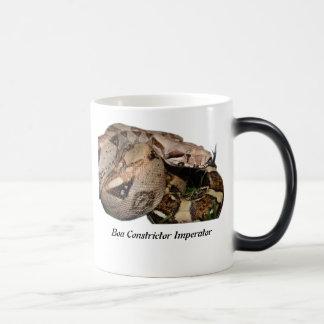 BCI Morphing Mug
