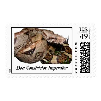 BCI Postage Stamp