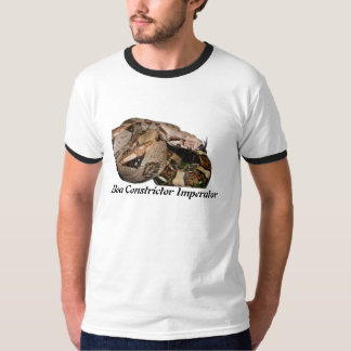 BCI Ringer T-Shirt