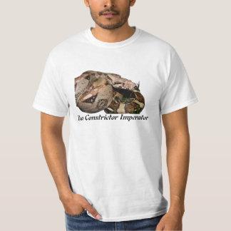 BCI Value T-Shirt