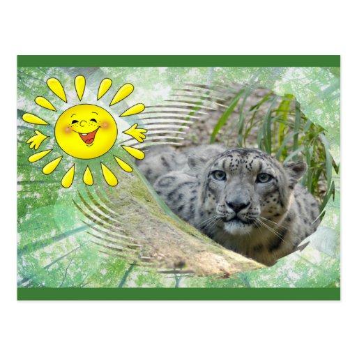bcr-snow-leopard-st-patricks-0017 postales