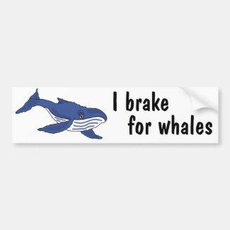 BD- I brake for whales bumper sticker