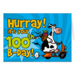 bd scooter cow - 100 greeting card