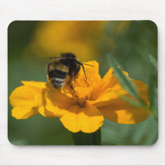 Be a bee mouse mats