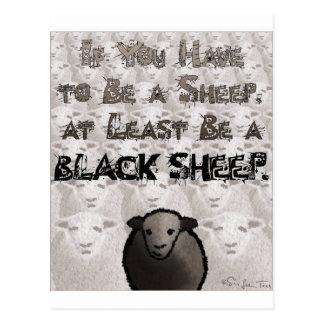 Be A Black Sheep Postcard