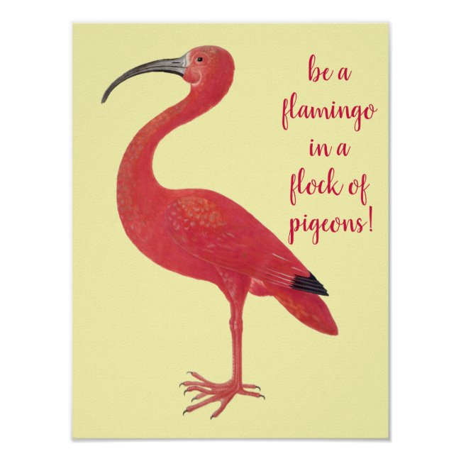 Be a Flamingo - Fun, Inspirational Quote