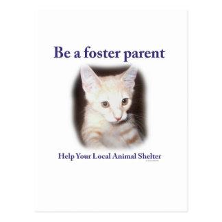 Be A Foster Parent Postcard