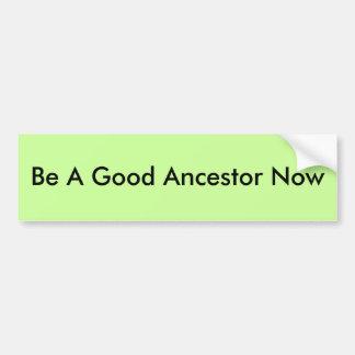 Be A Good Ancestor Now Car Bumper Sticker