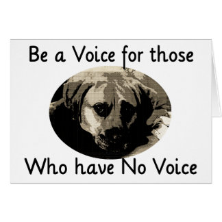 Be a Voice Card