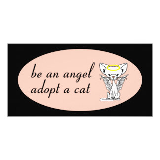 Be An Angel Adopt A Cat Photocard Photo Cards