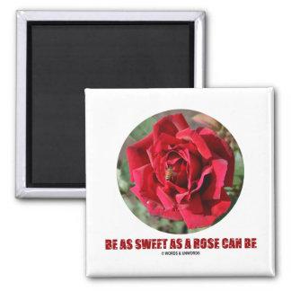 Be As Sweet As A Rose Can Be (Bee On A Red Rose) Fridge Magnet