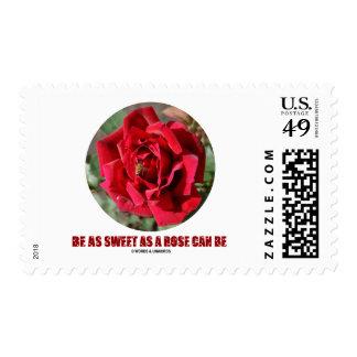 Be As Sweet As A Rose Can Be (Bee On A Red Rose) Postage Stamp