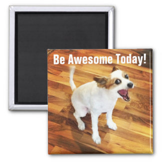 Be Awesome Today! Magnet
