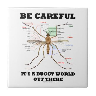 Be Careful It's A Buggy World Out There (Mosquito) Tiles