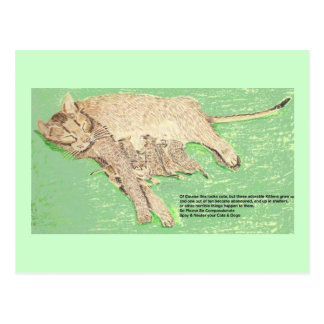 Be Compassionate, Spay And Neuter Postcard