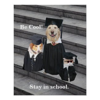 Be Cool!  Stay in school. Poster
