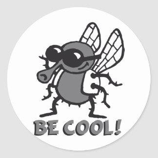 BE coolly fly 3c Classic Round Sticker