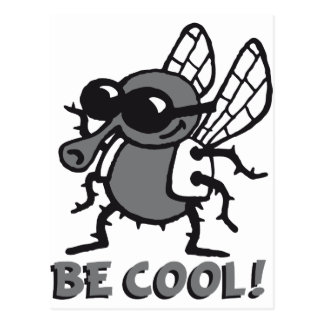 BE coolly fly 3c Postcards