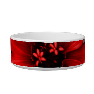 Be Different Red Flower Cat Water Bowl