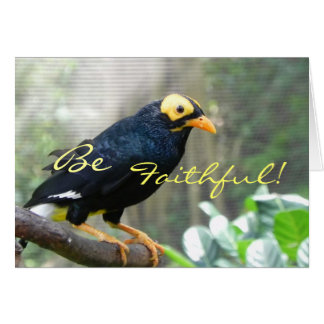 Be Faithful! Card