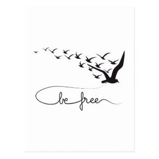 Be free, flying birds design postcard