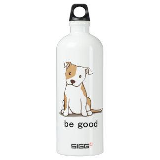 Be Good Aluminum Water Bottle