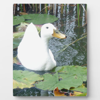 Be Happy Duck Plaques