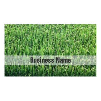 Be Happy Green Rice Field Double-Sided Standard Business Cards (Pack Of 100)