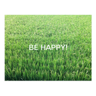 Be Happy Green Rice Field Postcard