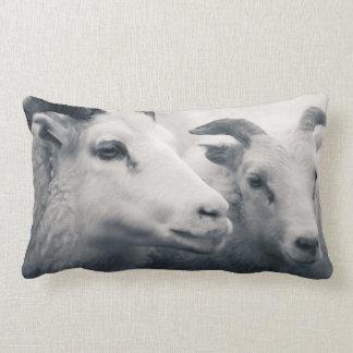 Be Kind Lumbar Pillow