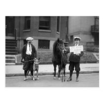 Be Kind to Animals Week, 1923 Postcard