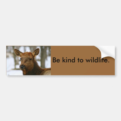 Be Kind to Wildlife bumper sticker Car Bumper Sticker