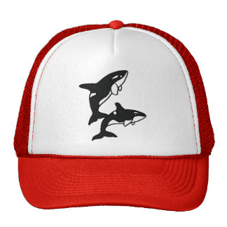 BE- Leapping Killer Whales Hat