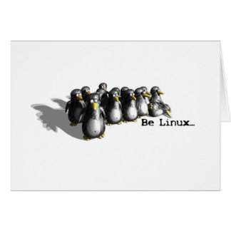 Be Linux Card