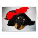 Be Mine-Dachshund puppy valentine's day card