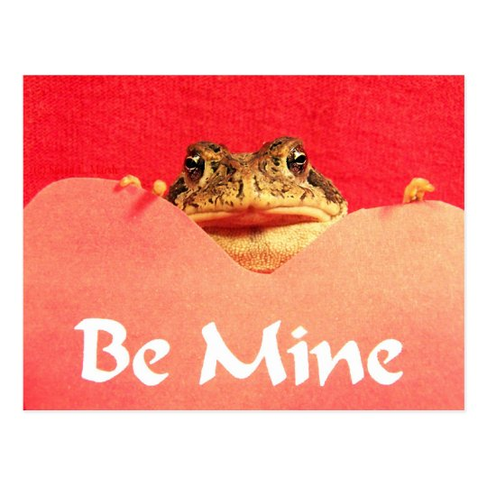 Be Mine Frog close up photograph Postcard