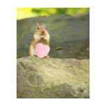 Be Mine Little Chipmunk Canvas Print