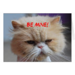 Be Mine Persian Cat Greeting Cards