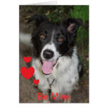 Be Mine Valentine from the Border Collie Dog Greeting Card