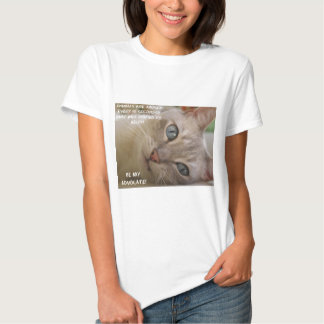 Be My Advocate Cat Tee Shirt
