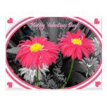 Be My Valentine! Postcards