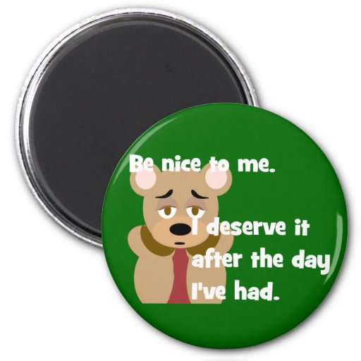 Be Nice Day I've Had Magnet