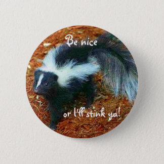 Be nice or I'll stink ya!-button Pinback Button