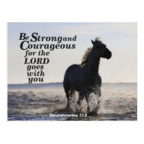 Be Strong and Courageous Deuteronomy 31:6 Horse Postcard