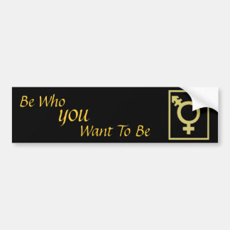 Be Who You Want To Be Bumper Sticker