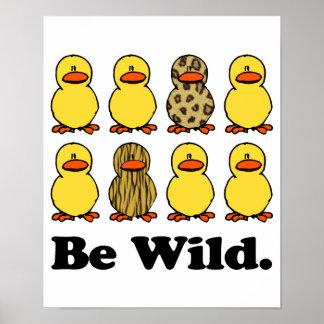 Be Wild Ducks Poster