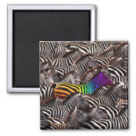 be yourself 2 inch square magnet