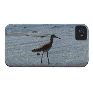 BEABIR Beach Birdie iPhone 4 Cover