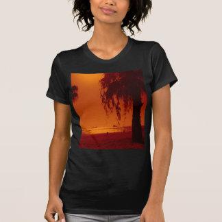 beach 14 tee shirts