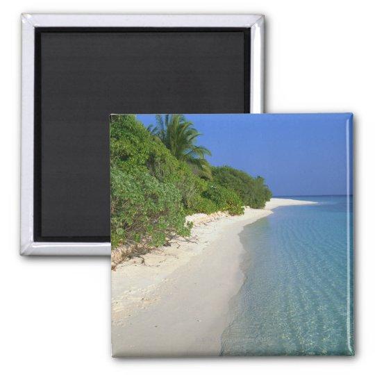 Beach 4 magnet